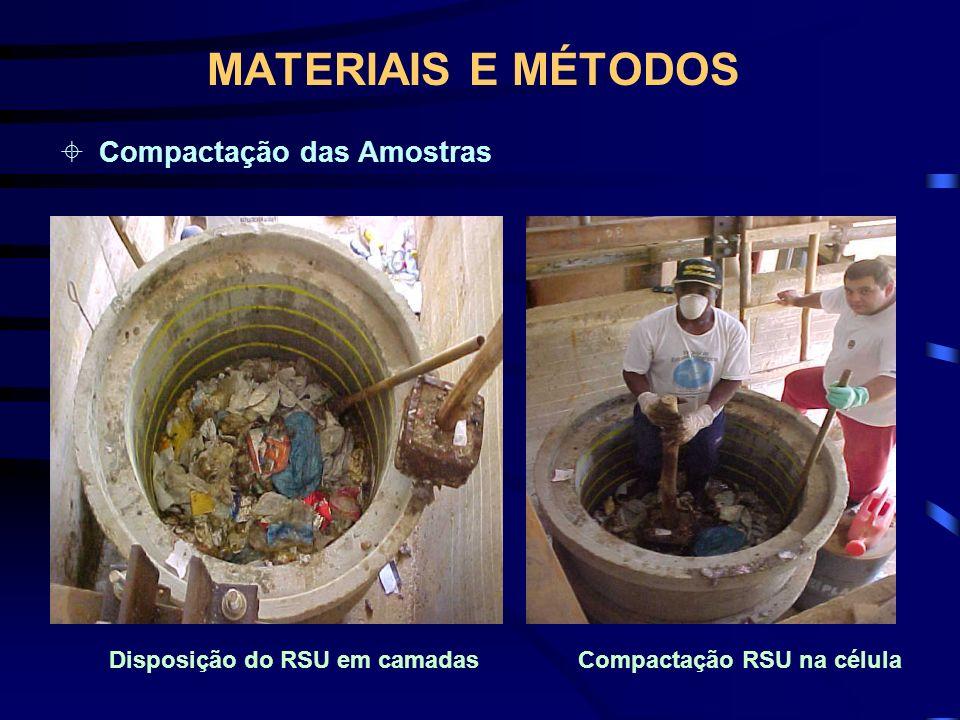 MATERIAIS E MÉTODOS Compactação das Amostras