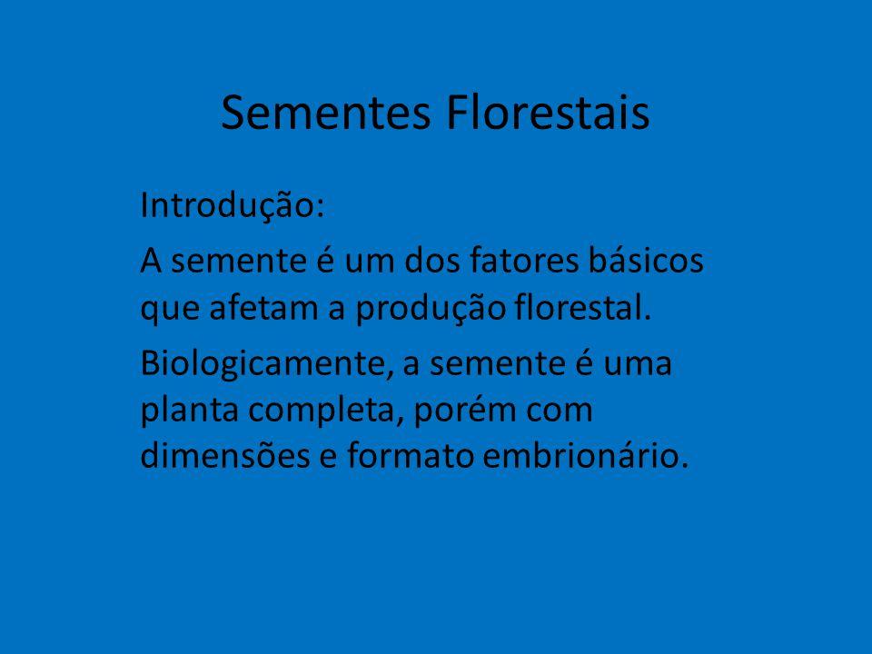Sementes Florestais Introdução: