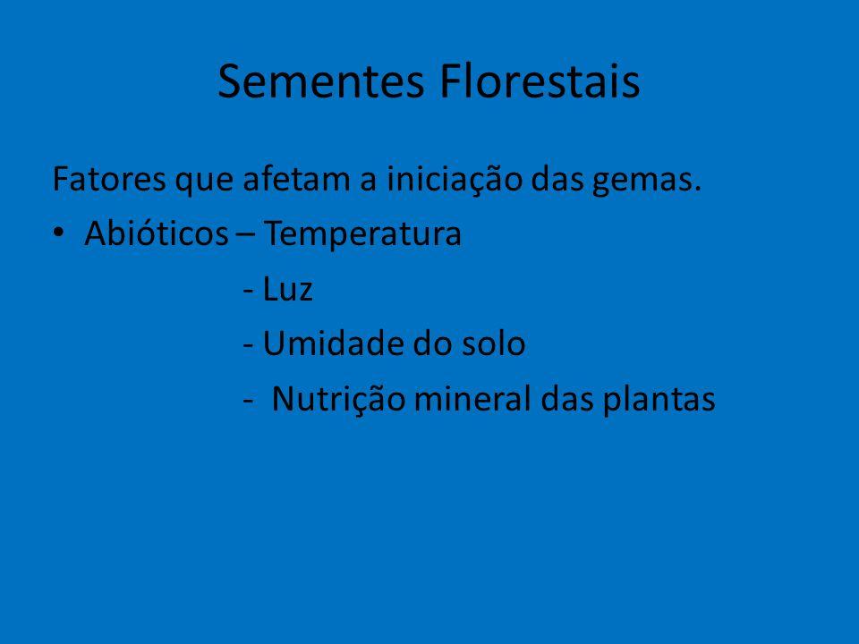 Sementes Florestais Fatores que afetam a iniciação das gemas.