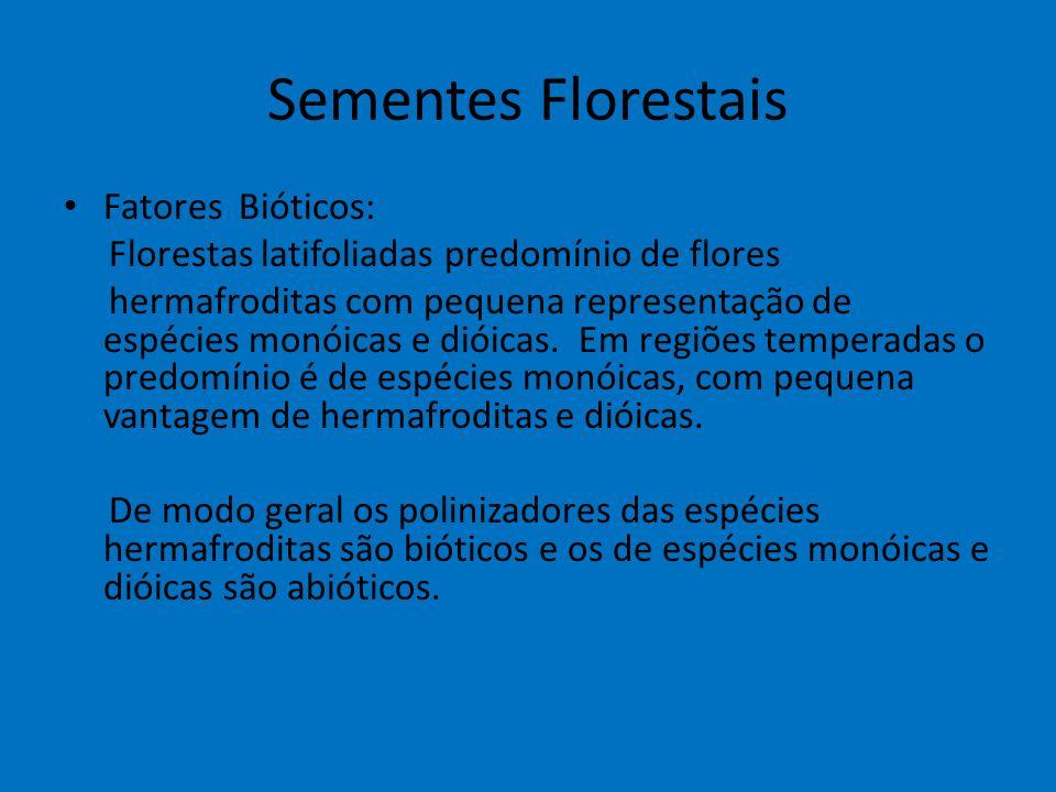 Sementes Florestais Fatores Bióticos: