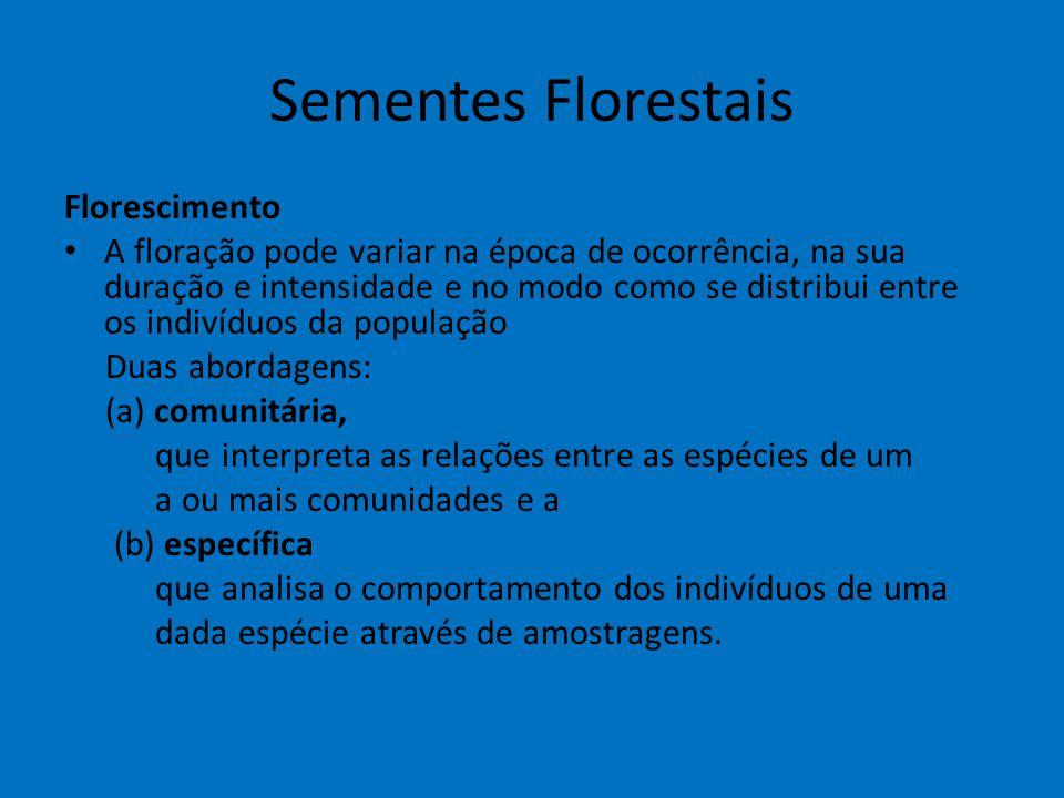 Sementes Florestais Florescimento
