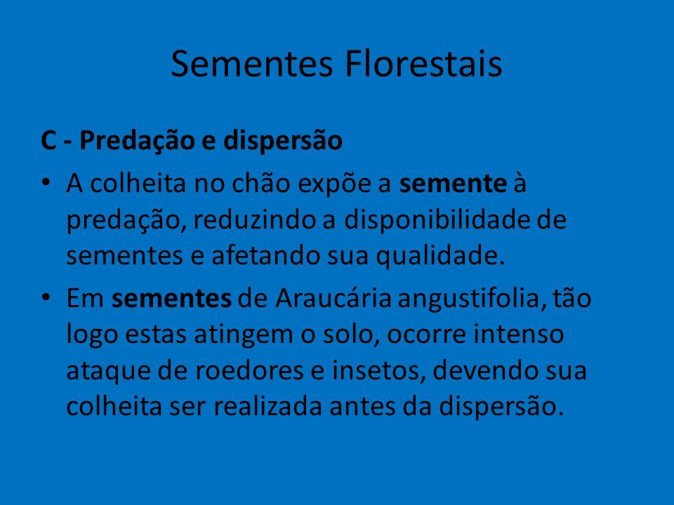 Sementes Florestais C - Predação e dispersão