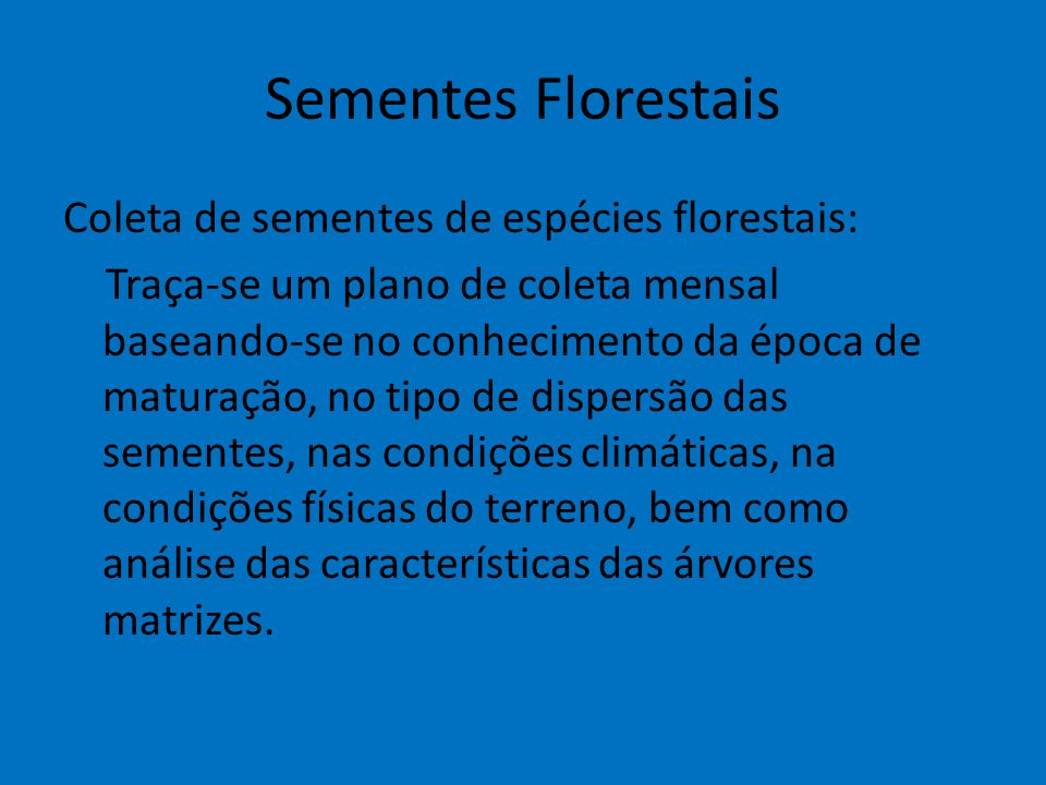 Sementes Florestais