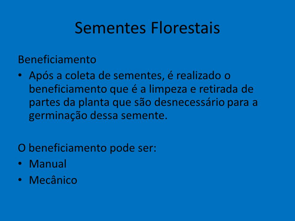 Sementes Florestais Beneficiamento