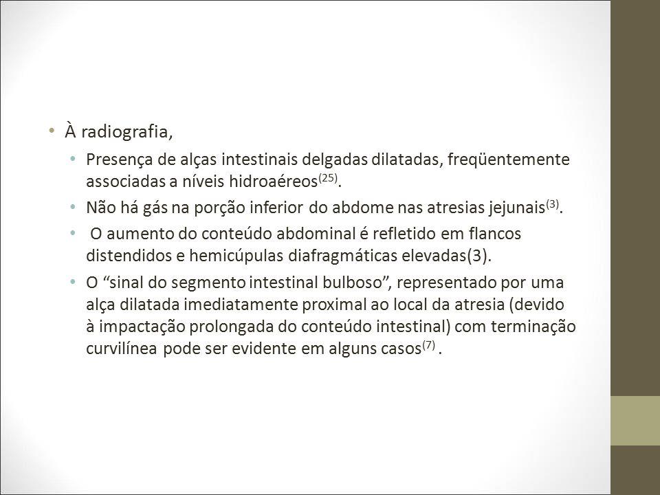 À radiografia, Presença de alças intestinais delgadas dilatadas, freqüentemente associadas a níveis hidroaéreos(25).
