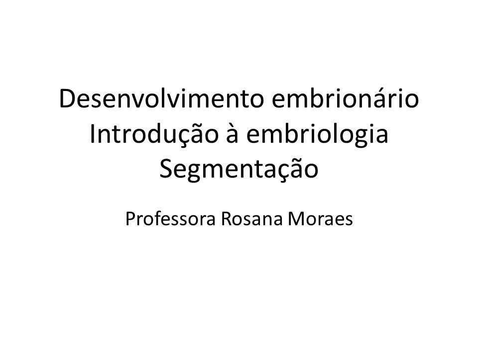 Desenvolvimento embrionário Introdução à embriologia Segmentação