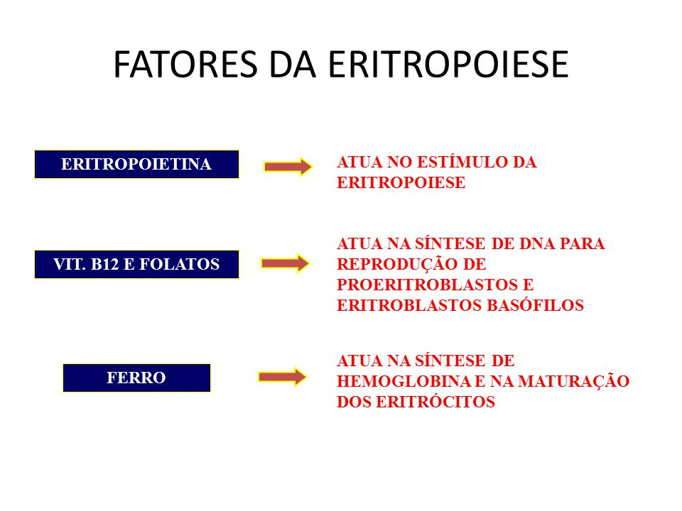 FATORES DA ERITROPOIESE