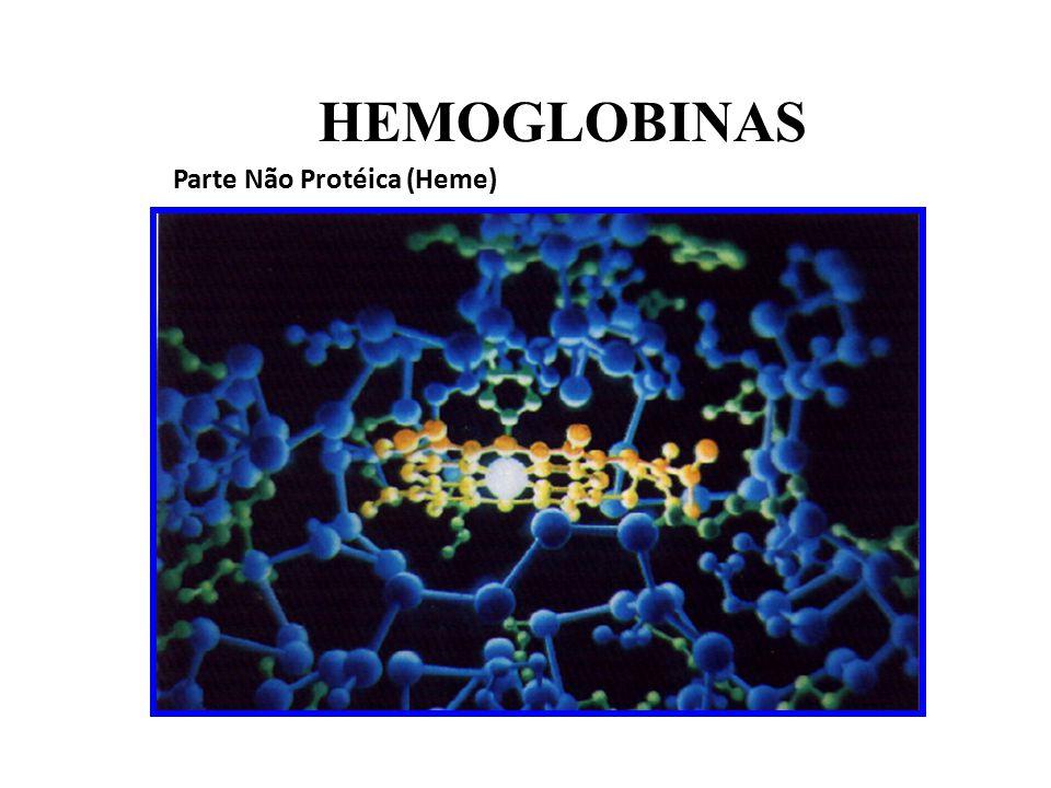 HEMOGLOBINAS Parte Não Protéica (Heme)