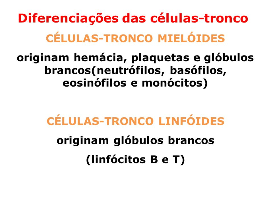 Diferenciações das células-tronco:
