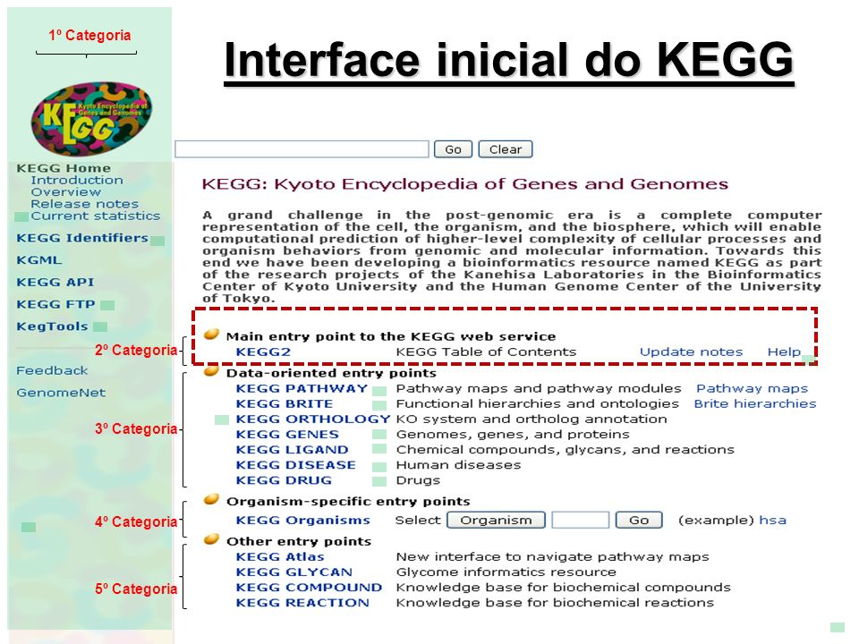 Interface inicial do KEGG