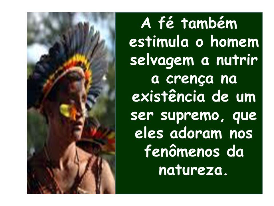 A fé também estimula o homem selvagem a nutrir a crença na existência de um ser supremo, que eles adoram nos fenômenos da natureza.