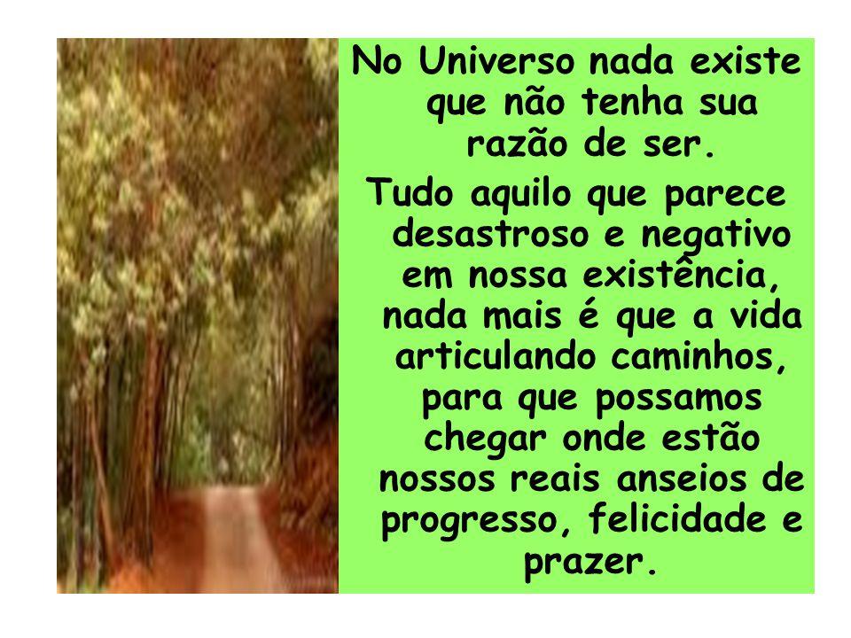 No Universo nada existe que não tenha sua razão de ser.