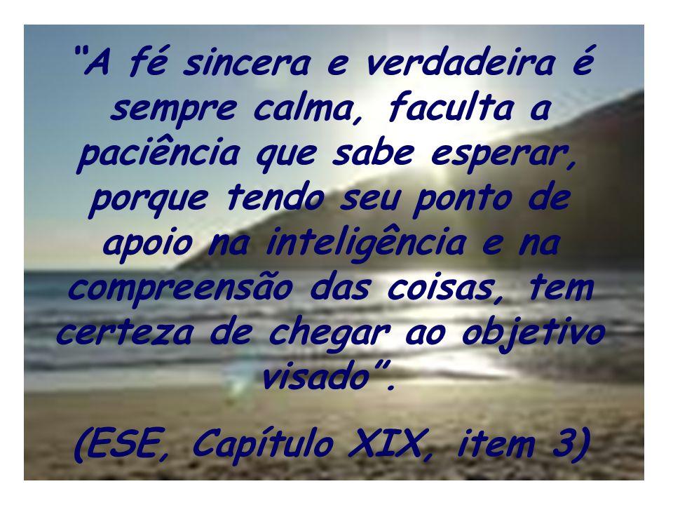 (ESE, Capítulo XIX, item 3)