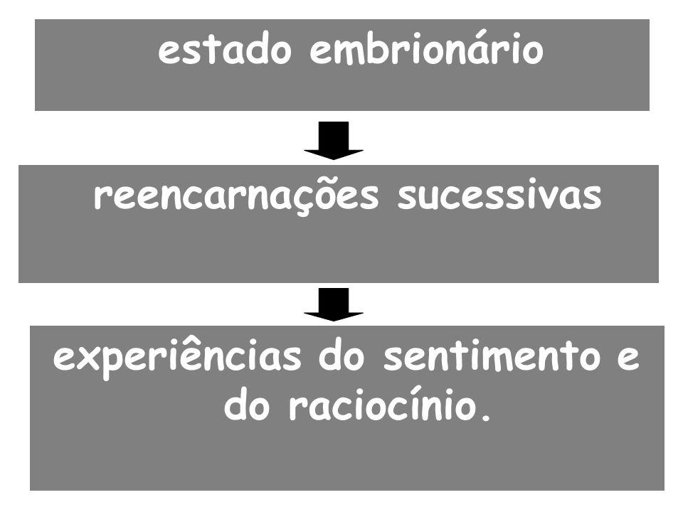 reencarnações sucessivas experiências do sentimento e do raciocínio.