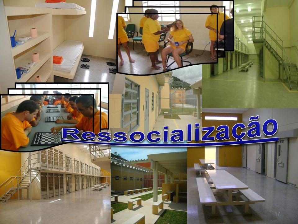 Ressocialização 17 17