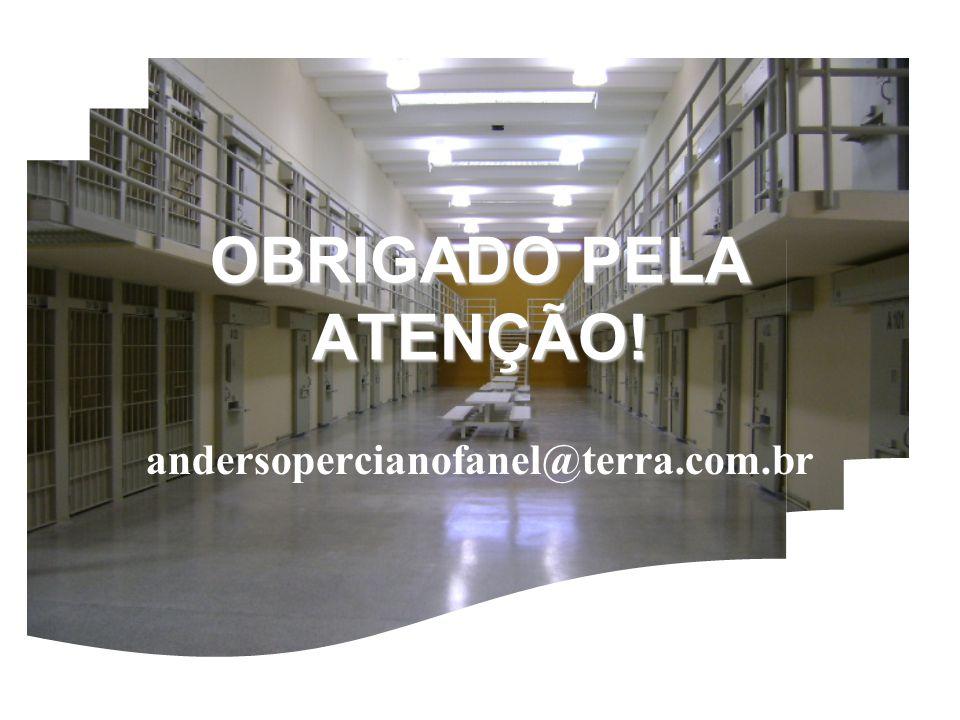 OBRIGADO PELA ATENÇÃO! andersopercianofanel@terra.com.br