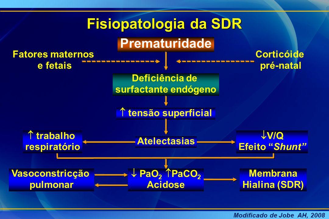 Fisiopatologia da SDR Prematuridade Fatores maternos e fetais