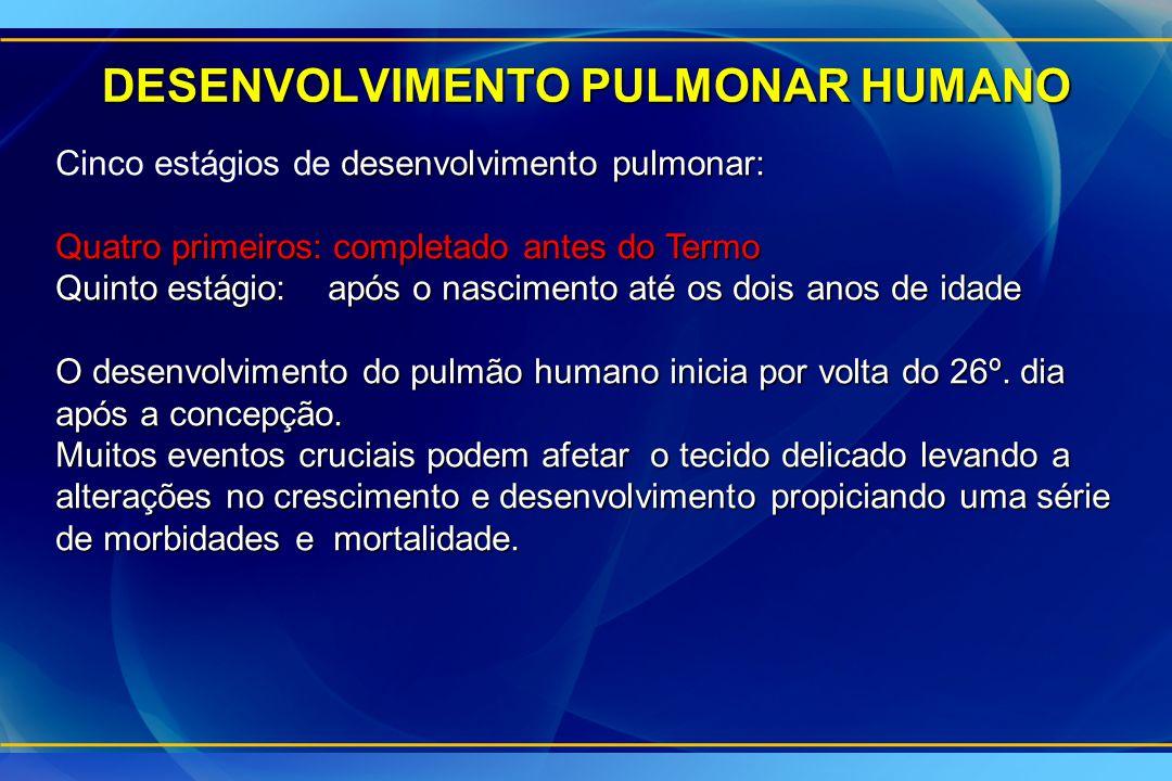 DESENVOLVIMENTO PULMONAR HUMANO