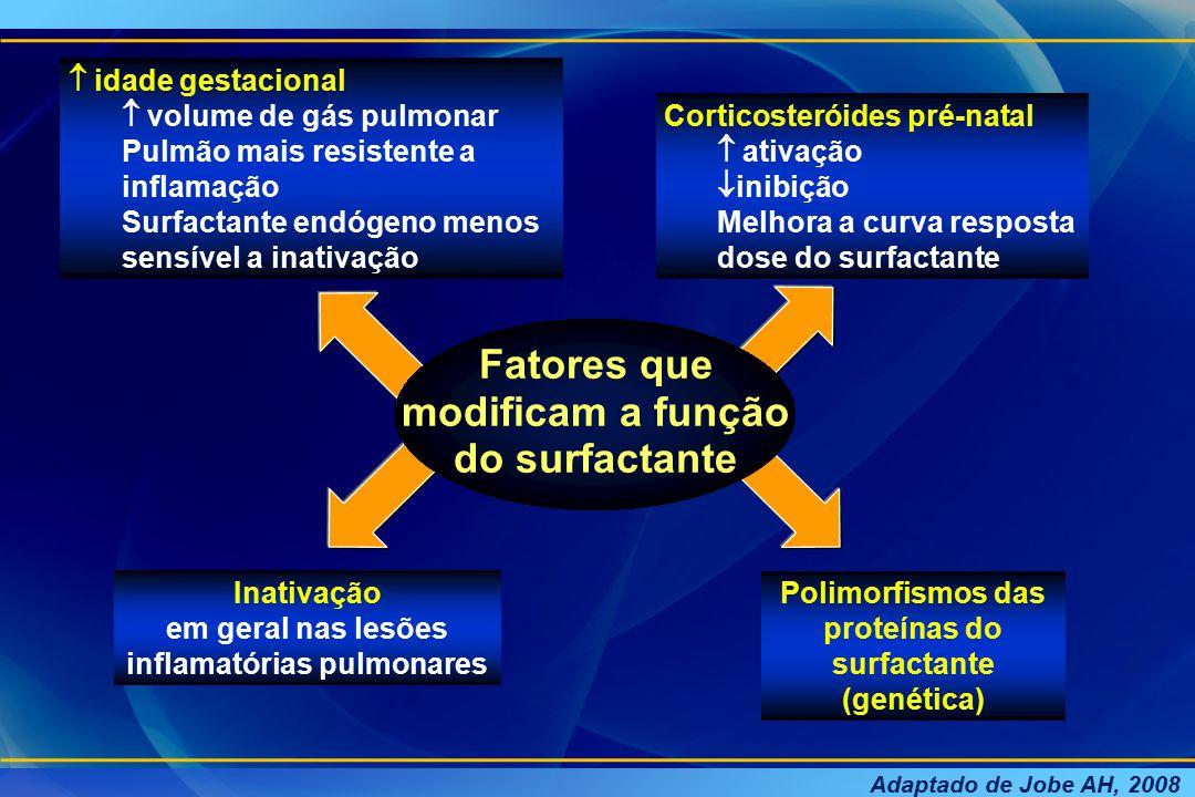 Fatores que modificam a função do surfactante