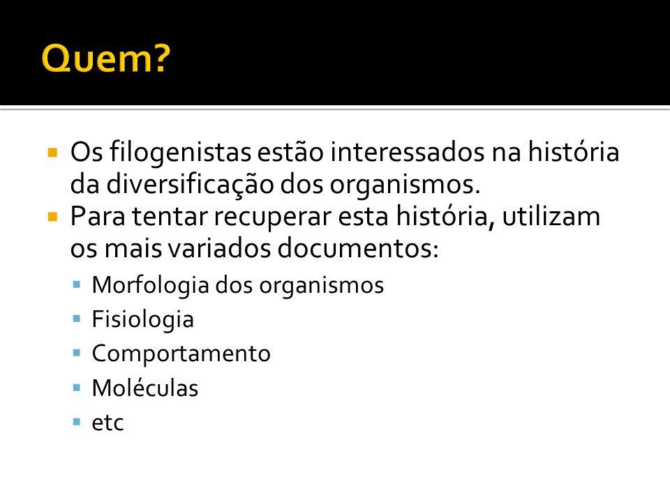 Quem Os filogenistas estão interessados na história da diversificação dos organismos.