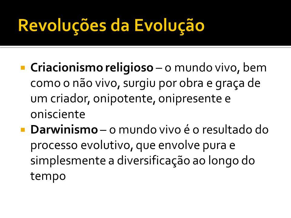Revoluções da Evolução