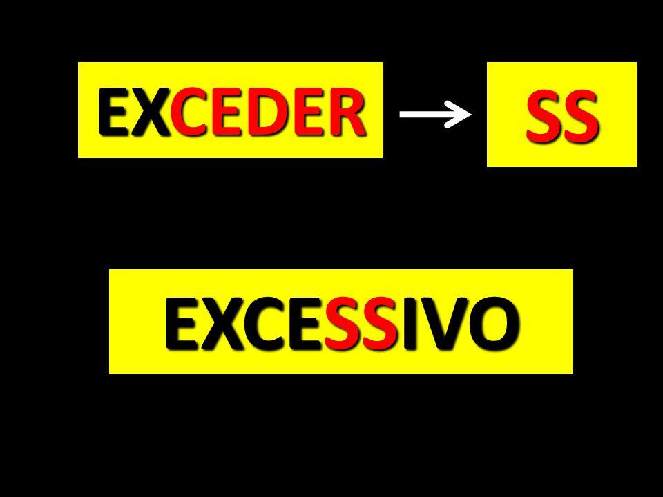 EXCEDER SS EXCESSIVO