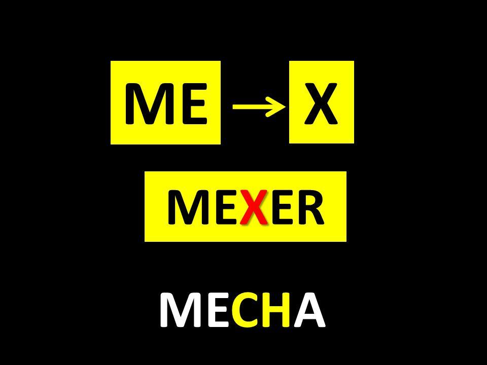 ME X MEXER MECHA