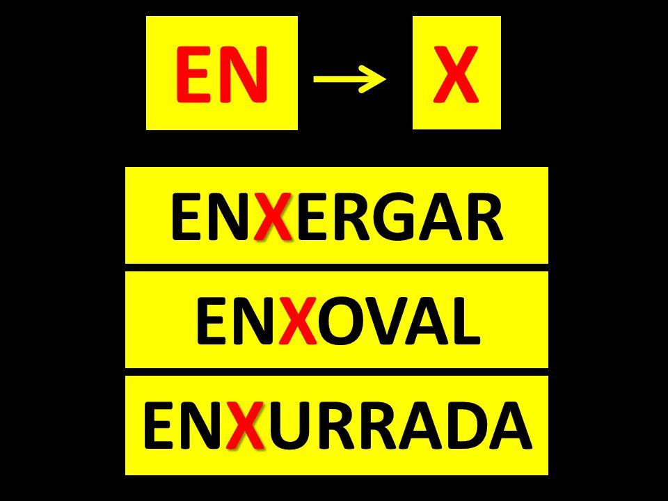EN X ENXERGAR ENXOVAL ENXURRADA