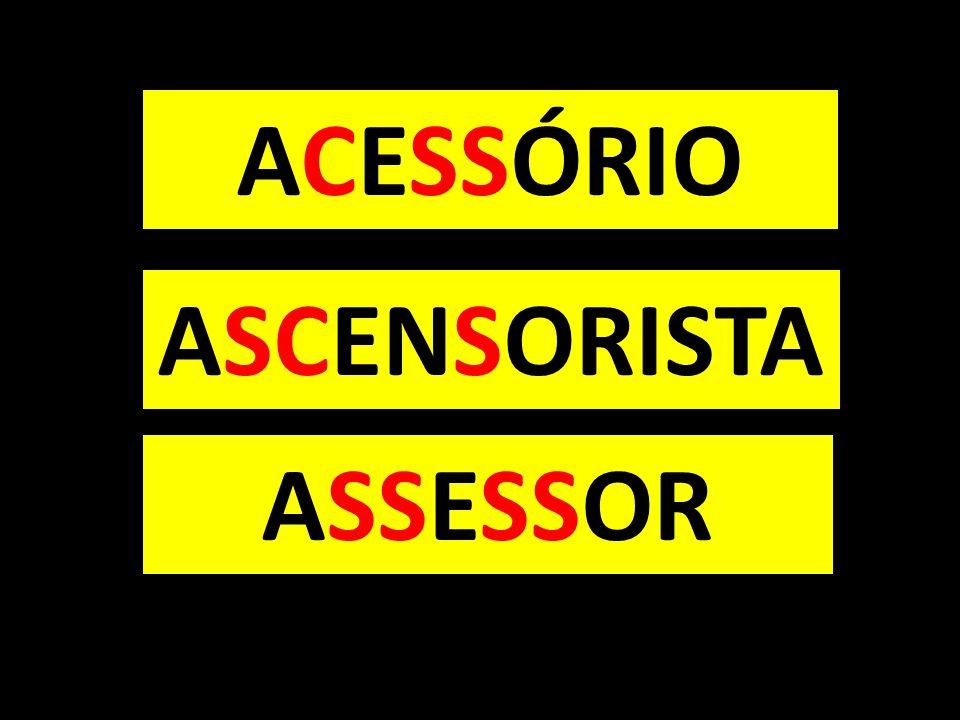 ACESSÓRIO ASCENSORISTA ASSESSOR