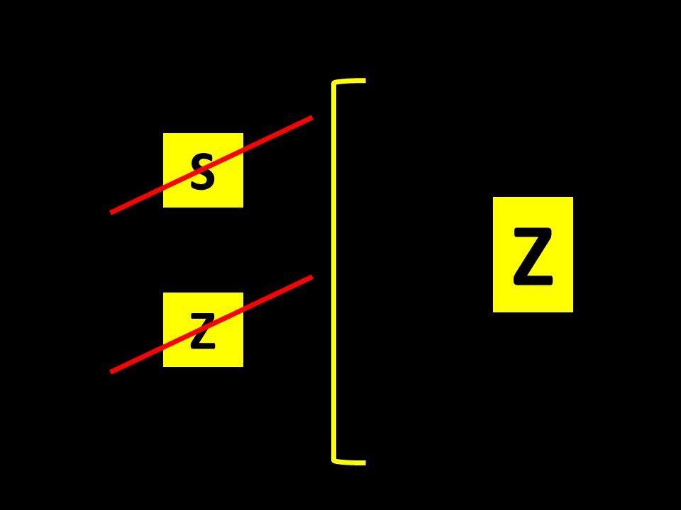 S Z Z