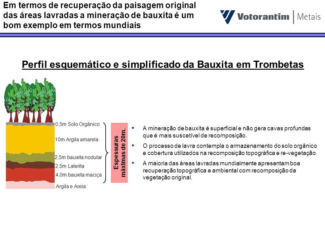 Perfil esquemático e simplificado da Bauxita em Trombetas