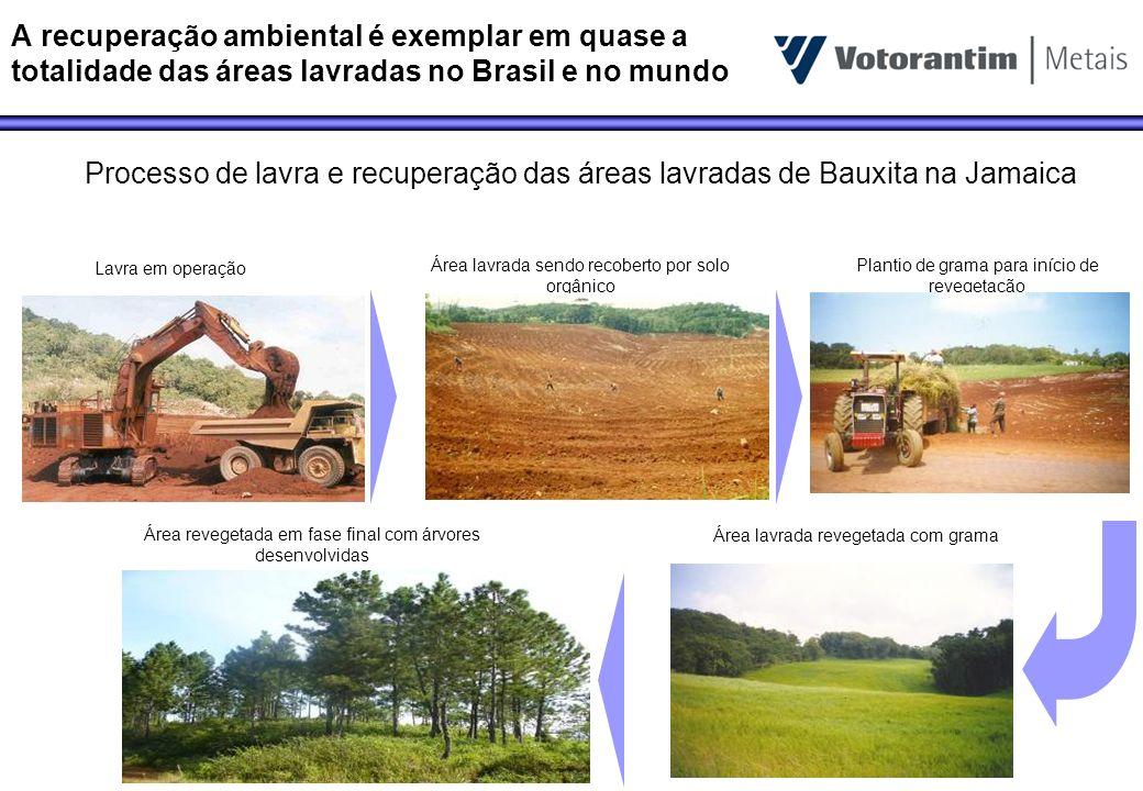 A recuperação ambiental é exemplar em quase a totalidade das áreas lavradas no Brasil e no mundo