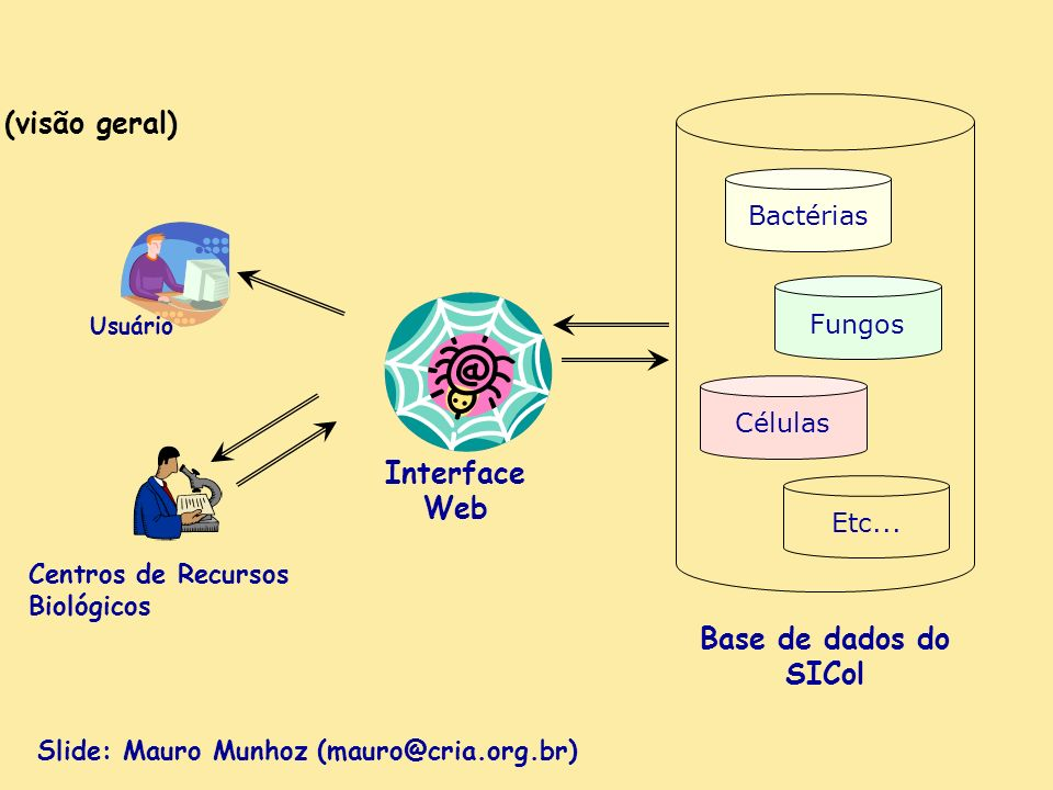 Base de dados do SICol Interface Web