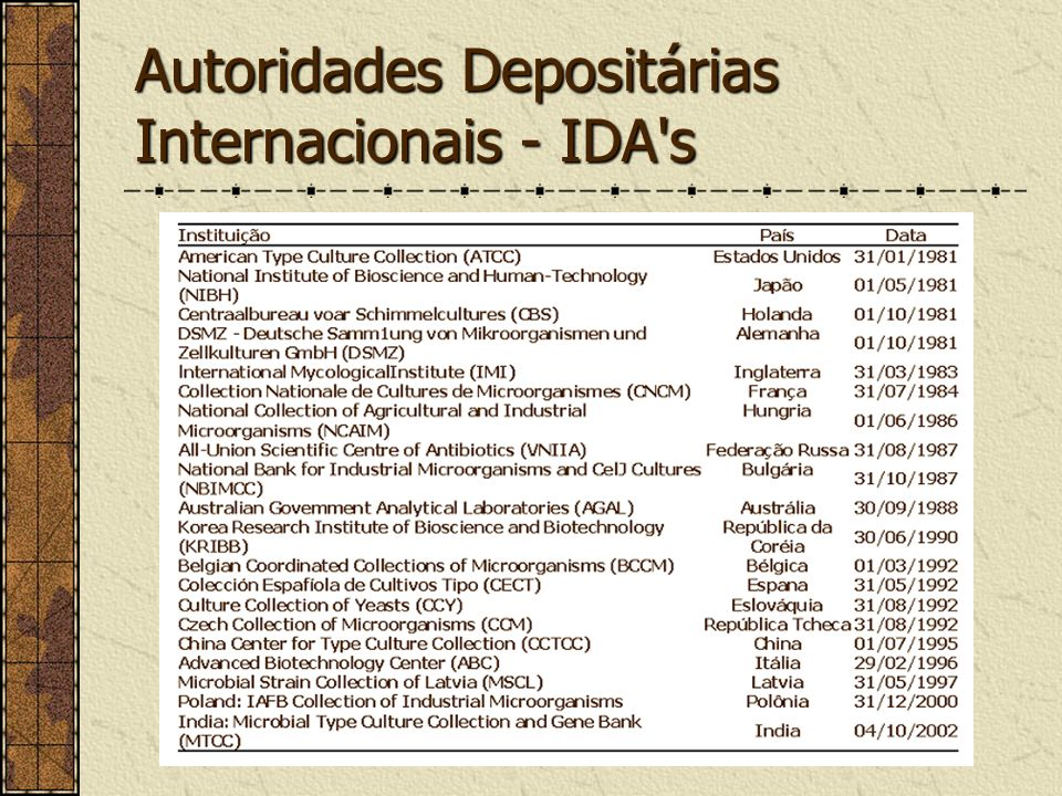 Autoridades Depositárias Internacionais - IDA s