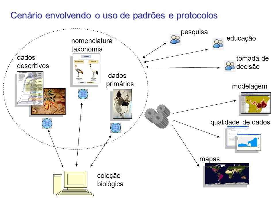 Cenário envolvendo o uso de padrões e protocolos