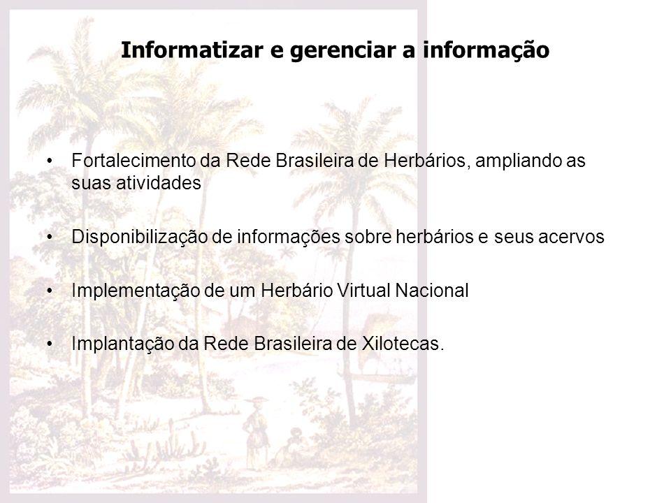 Informatizar e gerenciar a informação