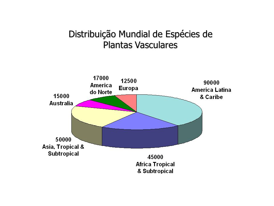 Distribuição Mundial de Espécies de Plantas Vasculares