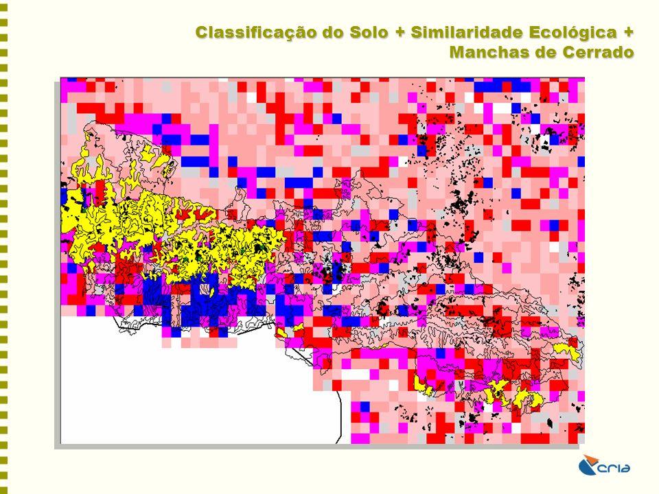 Classificação do Solo + Similaridade Ecológica + Manchas de Cerrado