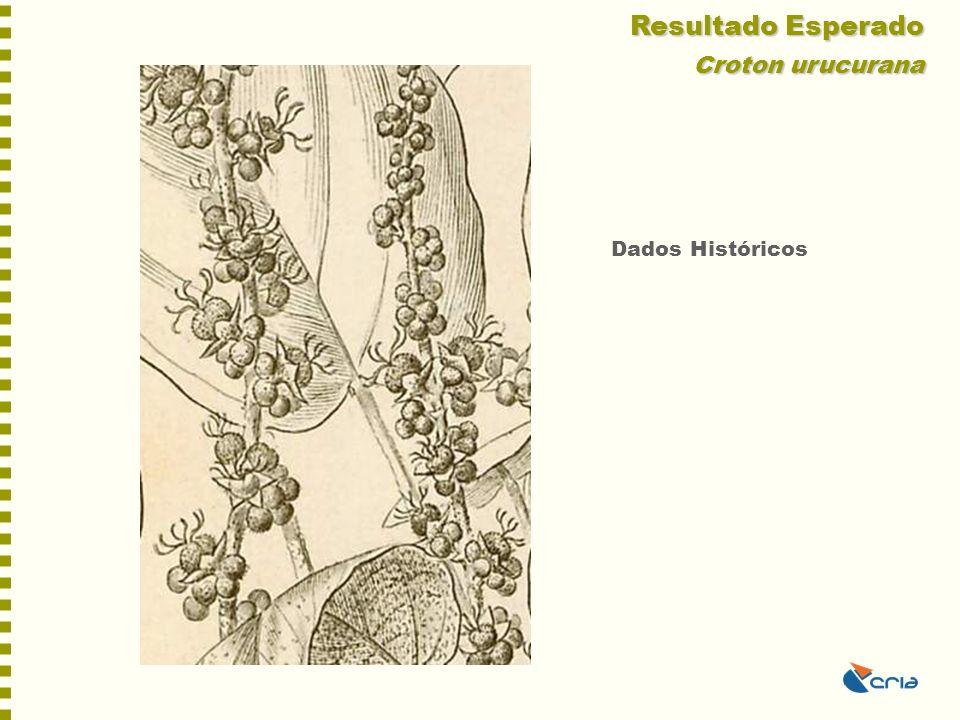 Resultado Esperado Croton urucurana