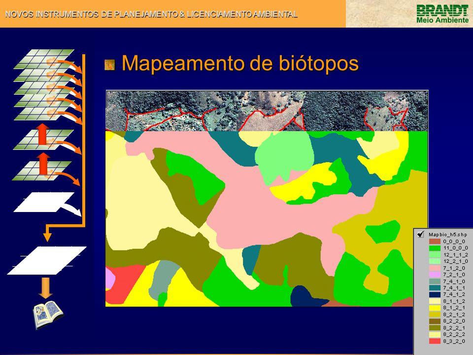 Mapeamento de biótopos