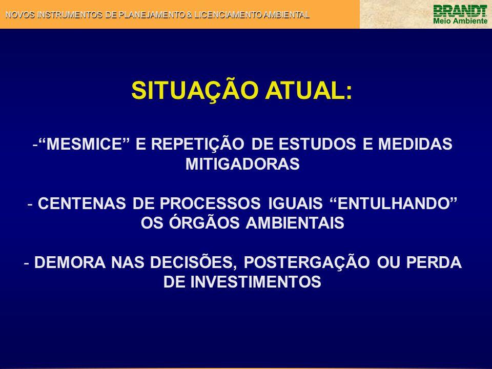 SITUAÇÃO ATUAL: MESMICE E REPETIÇÃO DE ESTUDOS E MEDIDAS MITIGADORAS
