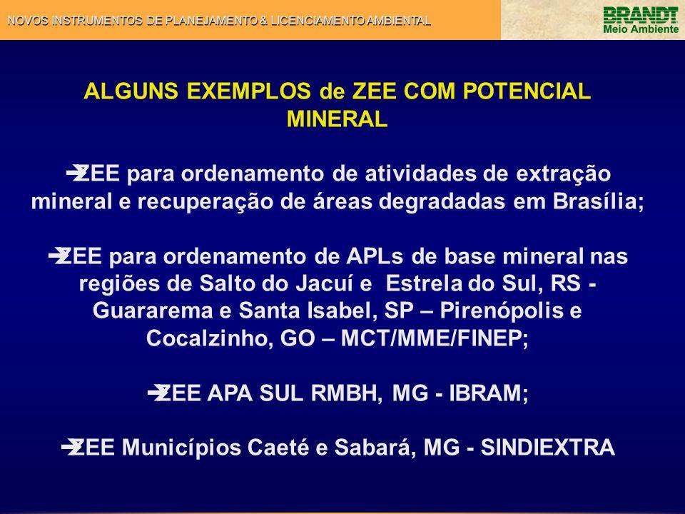 ALGUNS EXEMPLOS de ZEE COM POTENCIAL MINERAL