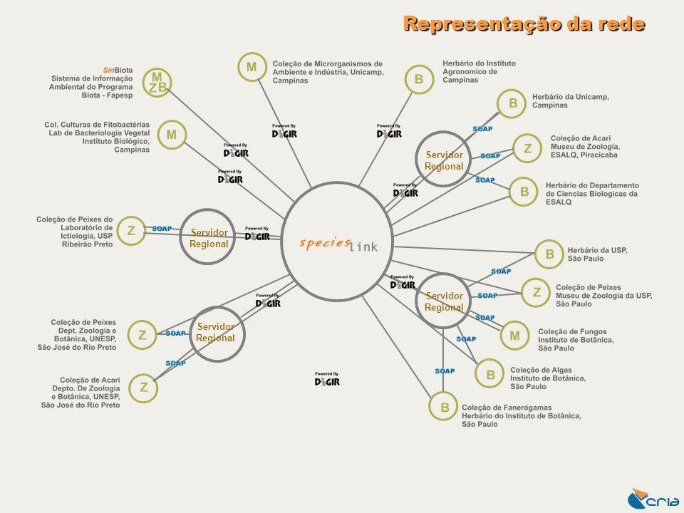 Representação da rede Servidor Regional Servidor Regional