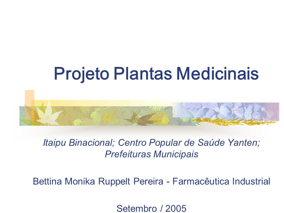 Projeto Plantas Medicinais