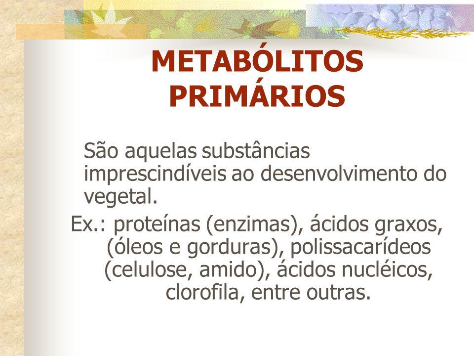 METABÓLITOS PRIMÁRIOS