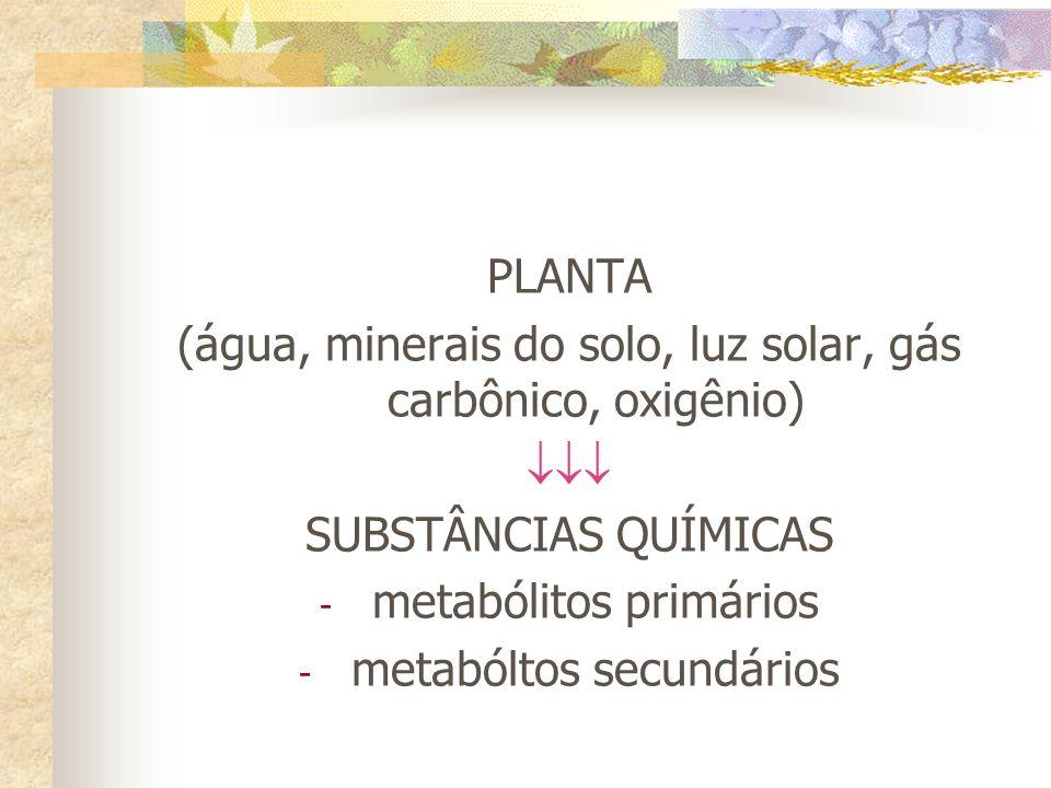 (água, minerais do solo, luz solar, gás carbônico, oxigênio) 