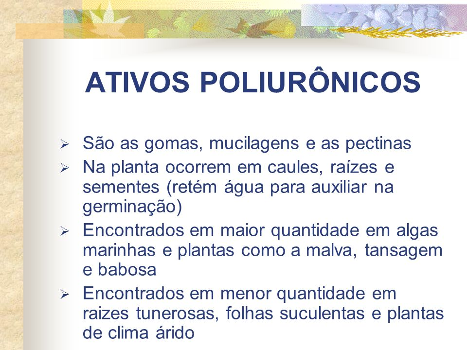 ATIVOS POLIURÔNICOS São as gomas, mucilagens e as pectinas