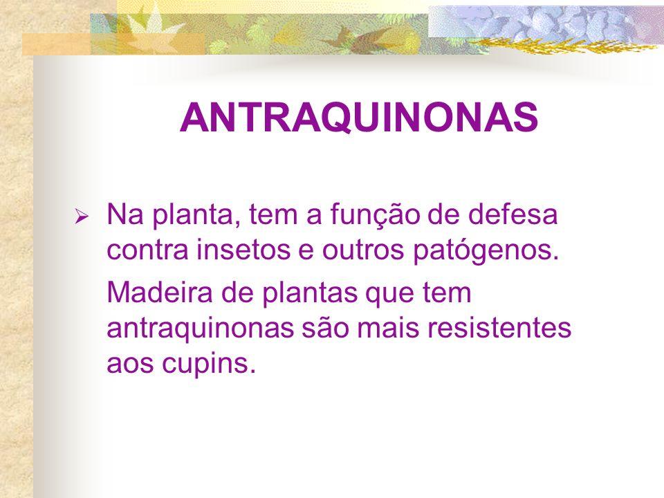 ANTRAQUINONAS Na planta, tem a função de defesa contra insetos e outros patógenos.