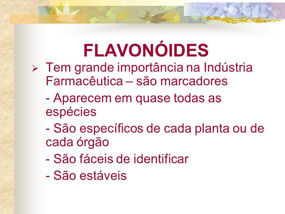 FLAVONÓIDES Tem grande importância na Indústria Farmacêutica – são marcadores. - Aparecem em quase todas as espécies.