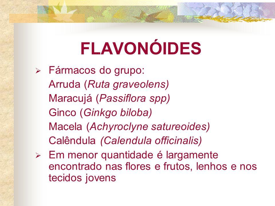 FLAVONÓIDES Fármacos do grupo: Arruda (Ruta graveolens)